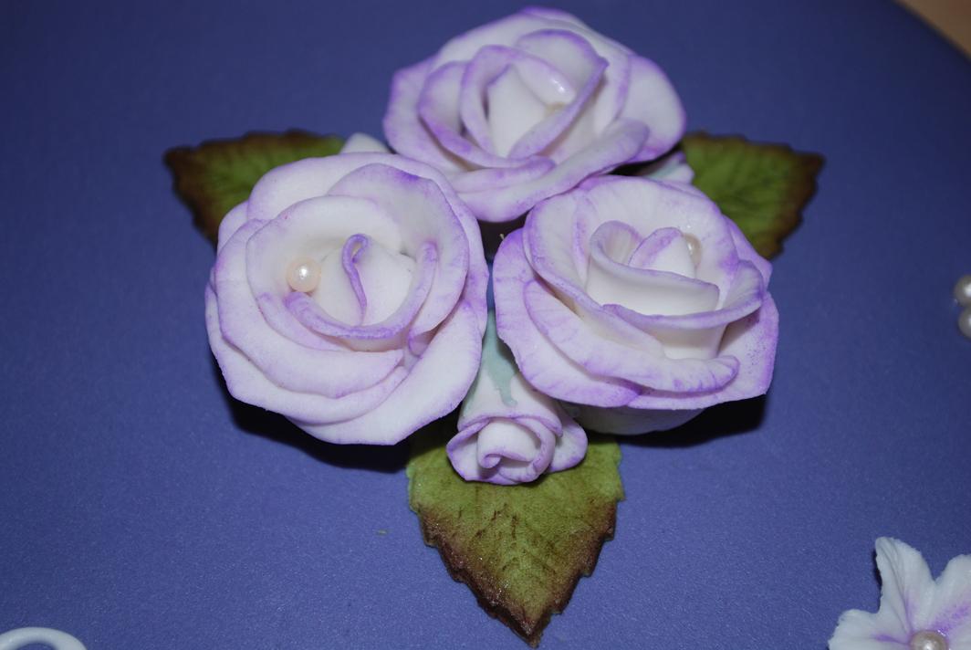 Vita rosor med lila kanter